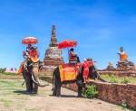 Šri Lanka - otok kulturne raznolikosti i zlatnih plaža